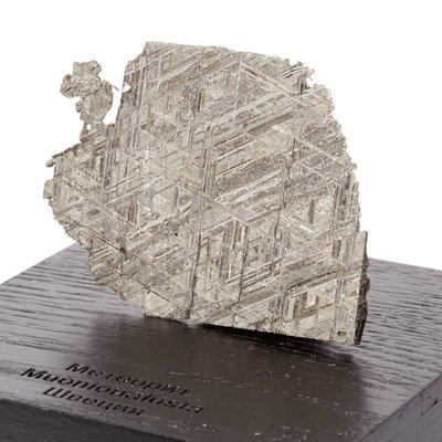Метеорит Муонионалуста 79,76 гр с коробкой