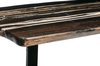 Журнальный столик из окаменелого дерева