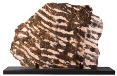 Строматолиты на подставке