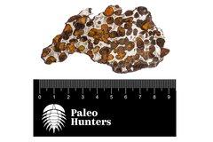 Метеорит Sericho (палласит) 27,12 гр