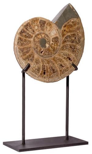 Аммонит Parahoplites sp. на подставке