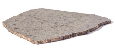 Марсианский метеорит NWA 12564