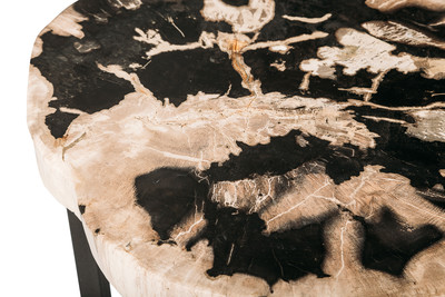 Кофейный столик из окаменелого дерева
